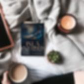 BookBrushImage364.png