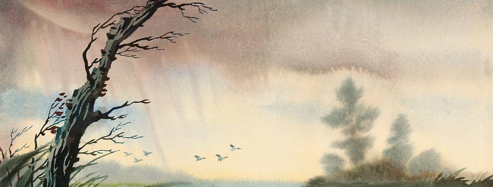 #40 Rain Squall