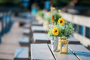 contented-sole-wedding-04.jpg