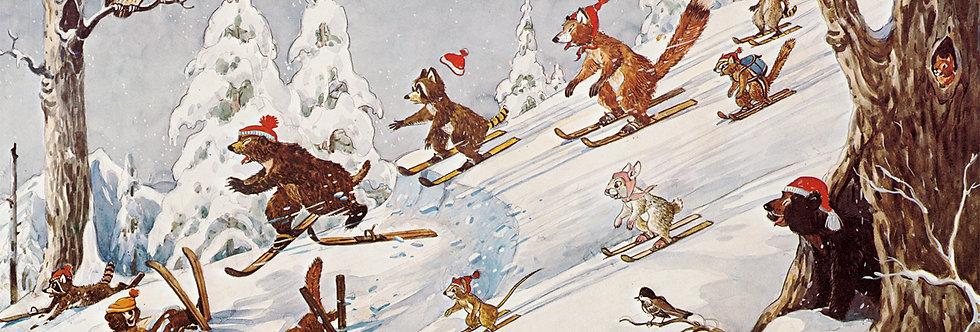 #54 Skiing