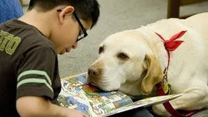 In Honor of World Read Aloud Day