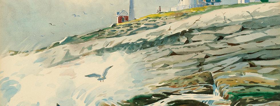 #60 Pemaquid Gulls