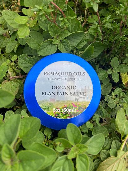 Organic Plantain and Calendula Salve