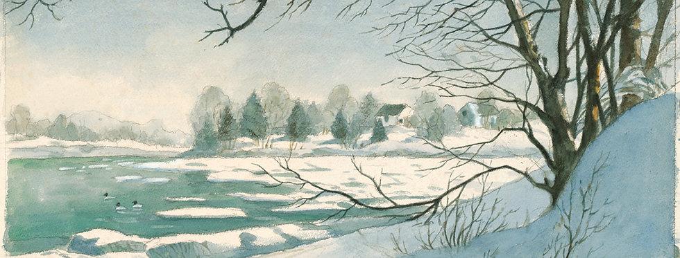 #19 Day's Cove in Winter
