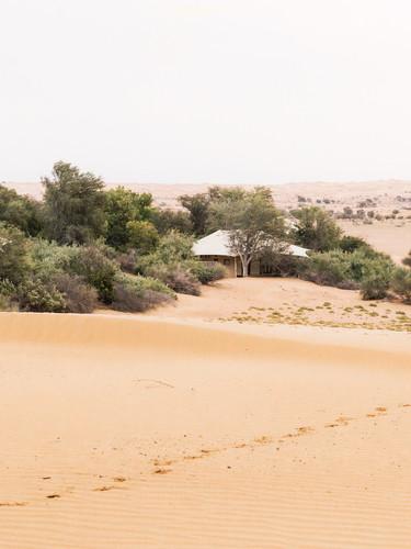 Al-Maha-UAE-villa-view.jpg