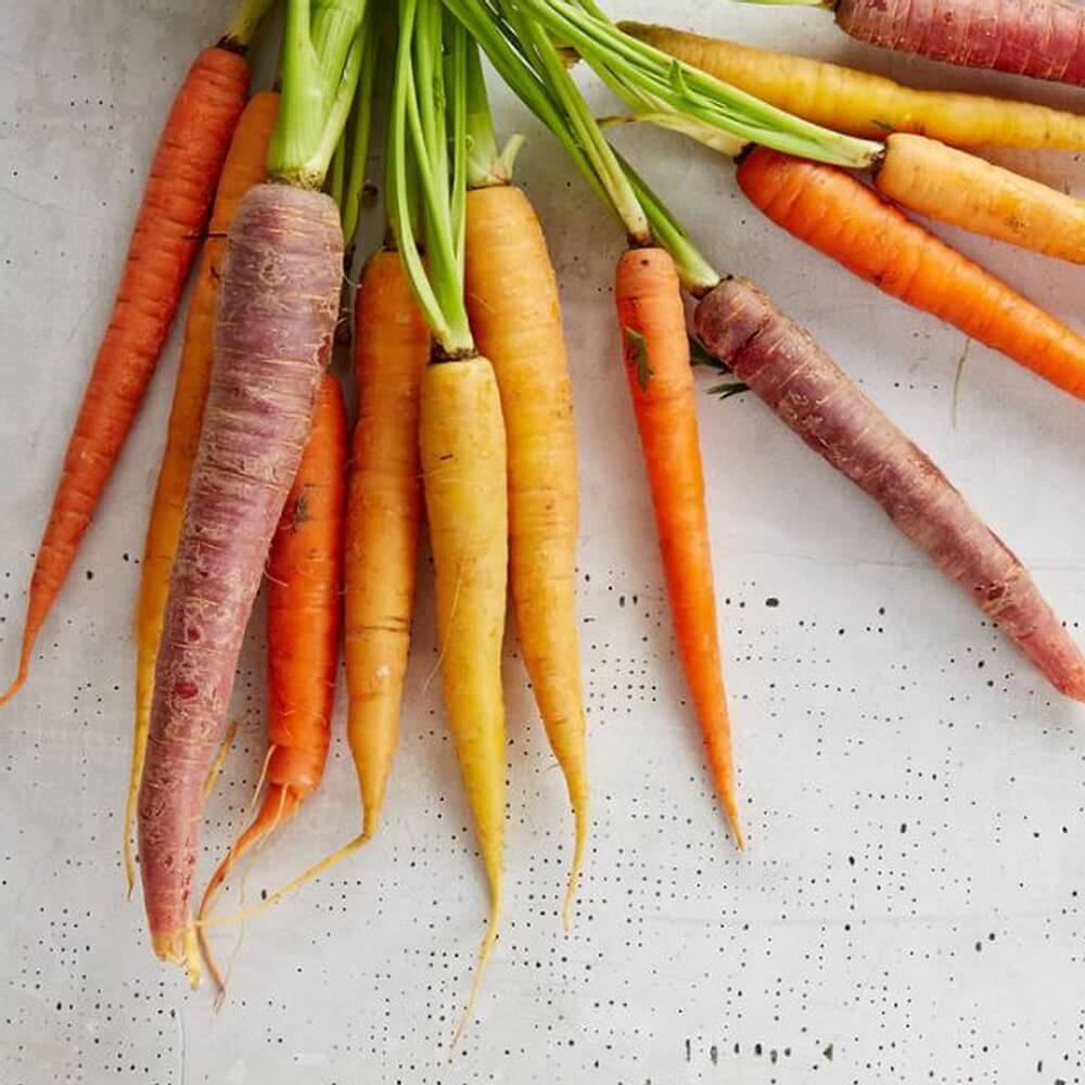 bienfait de la carotte