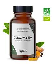 curcuma vegalia