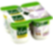 yaourts nature Vrai