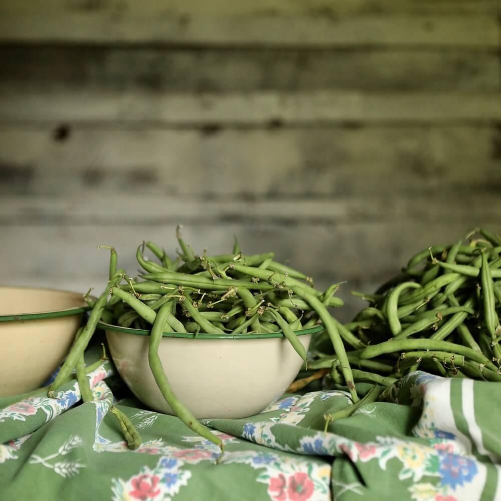 vertus des haricots verts