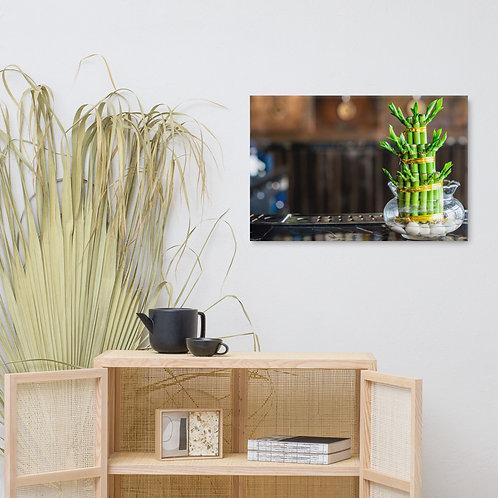 Bokeh Bamboo Canvas
