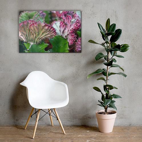 Macro Cacti Canvas