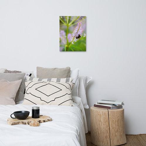 Mr Pollinator Canvas