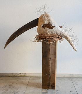 Sensevogel