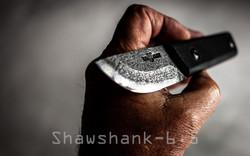 Shawshank 6.5