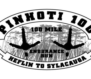 The 100 Mile Attempt