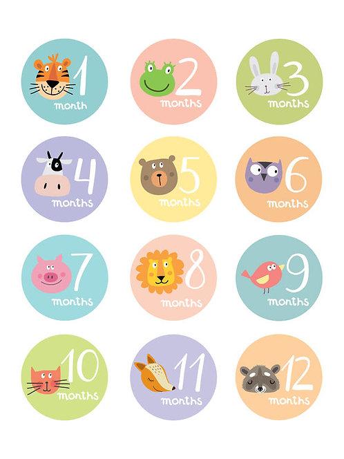 מדבקות לחודשי התינוק/ת | מדבקות תיעוד השנה הראשונה | מתנה ליולדת