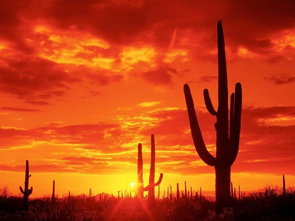 desierto rojo atardecer