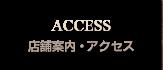 gNavi_ACCESS_163x70.png