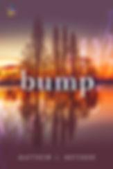 Bump-f500.jpg