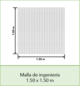 Imagen03.png