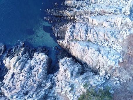 Fridykning i Sverige/Freediving in Sweden