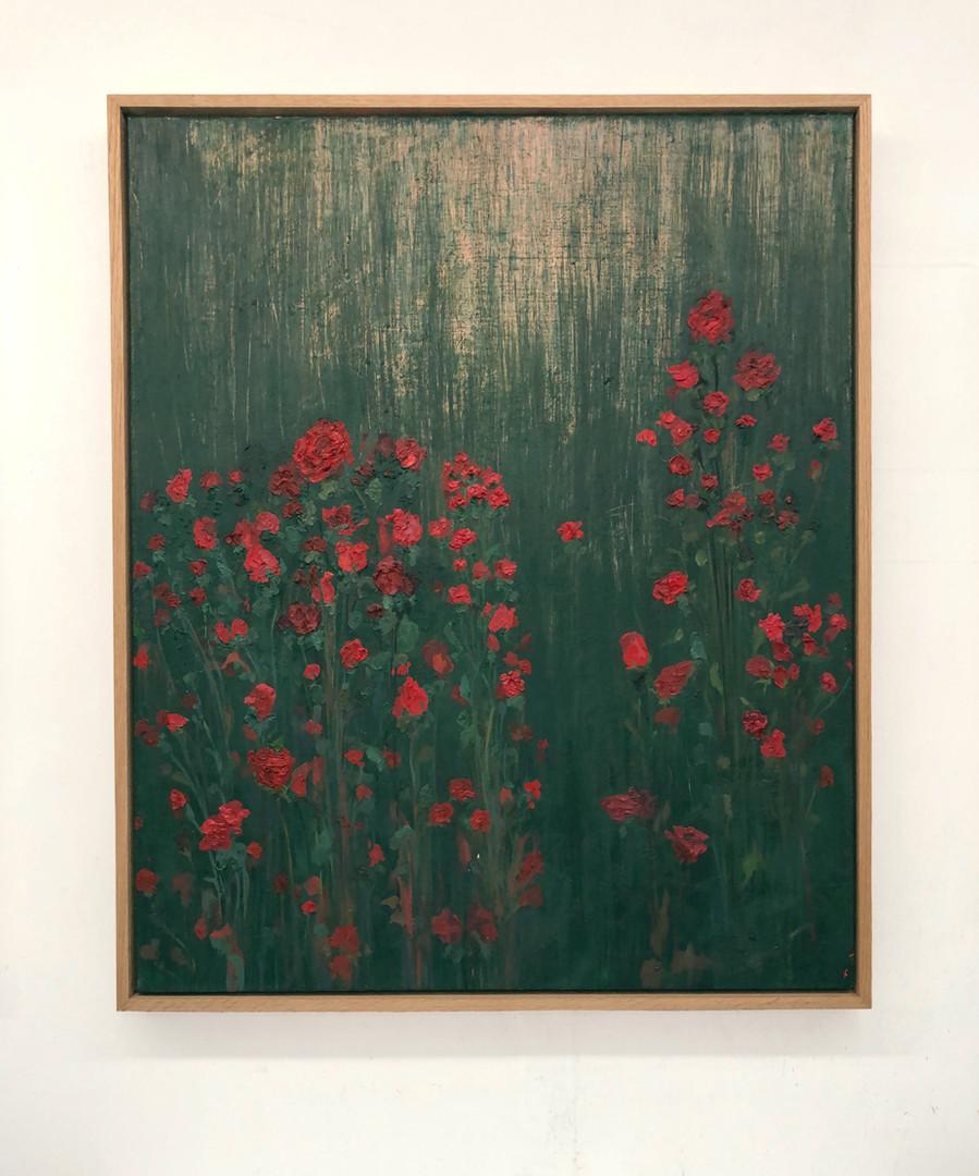 Oneiric Rose Field