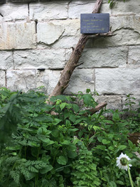 Maison de famille - jardin 3.jpg