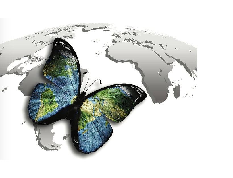 Butterfly(L).jpg
