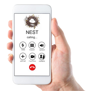 nest-app-no-background.png