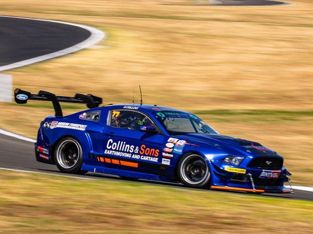 Collins & Sons Mustang