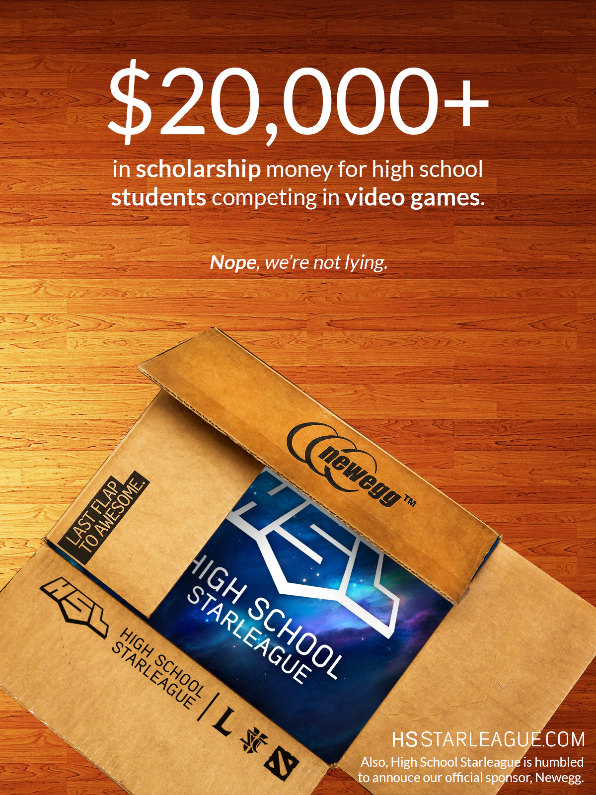 HSL Newegg Partnership Campaign Ad