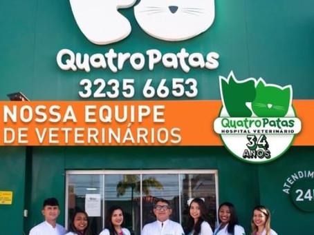 Quatro Patas completa 34 anos de sucesso no mercado veterinário