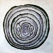 Onion-Rings-purple-photoshop.jpg