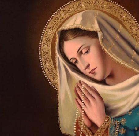 Maria: Mãe da Igreja e exemplo de jornada