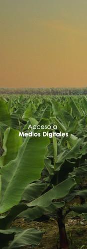 Acceso a medios digitales