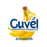 EXFI GUVEL.jpg