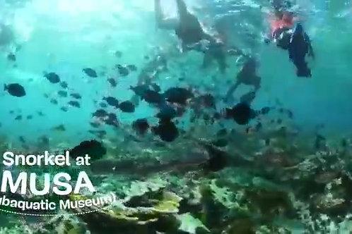Pleasure Isla Mujeres