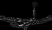 Alain Logo.png