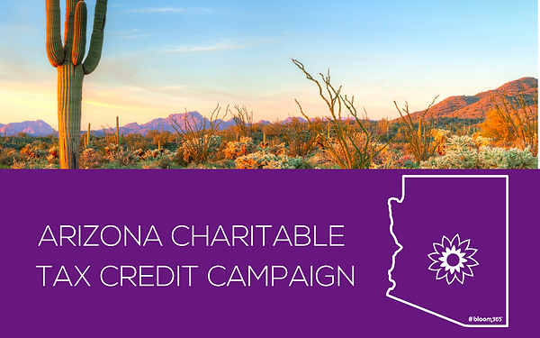 AZ CHARITABLE TAX CREDIT BANNER.png
