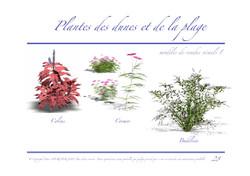 Ressac-dossier graphique_Page_28