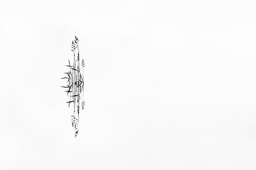 Spirit 3_2