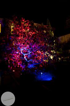 Night-Museum-19.jpg