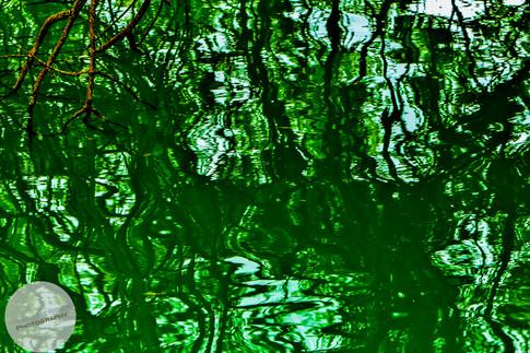 Reflections-11.jpg