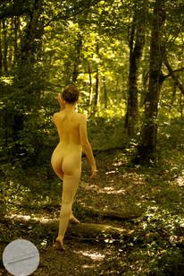 Summer Forest-19.jpg