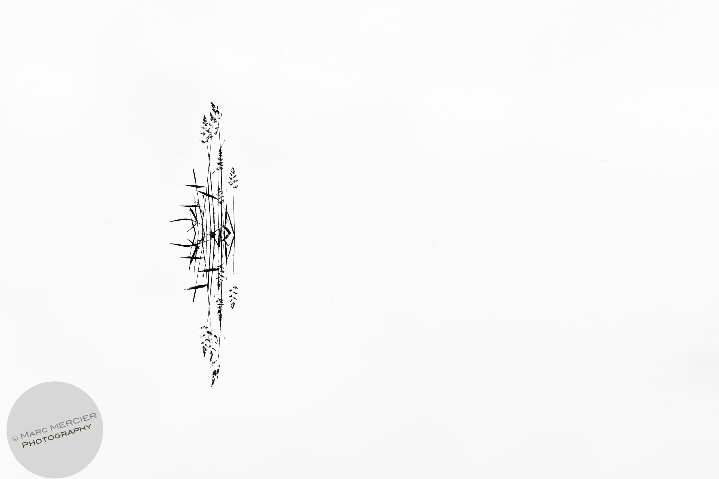 Spirit_3-2