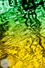 Reflections-15.jpg