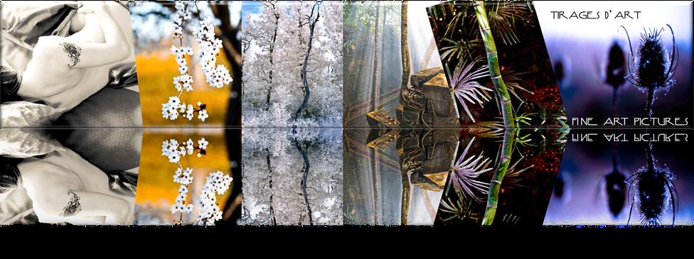 Marc MERCIER photography : tirages photographiques d'art par Marc MERCIER