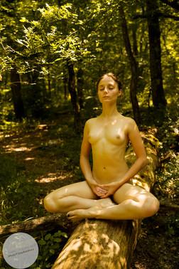Summer Forest-26.jpg