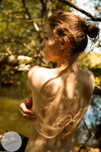 Summer Forest-5.jpg