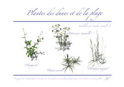 Ressac-dossier graphique_Page_30